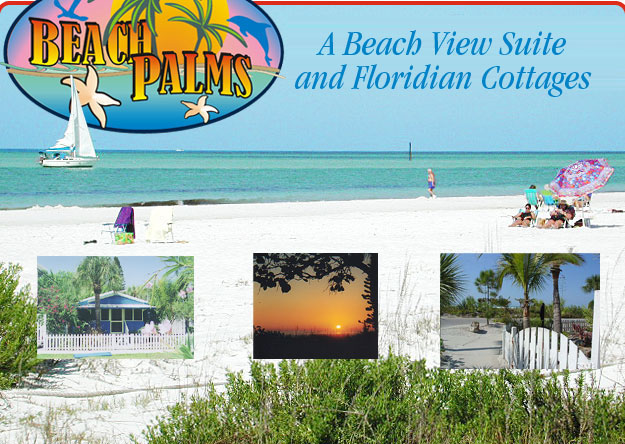 Beach Palms Siesta Key Fl The Best Beaches In World